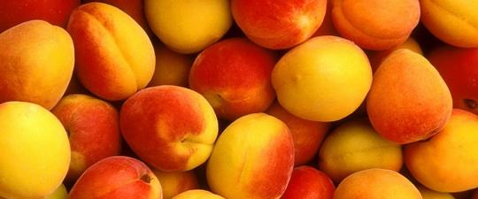 Самые полезные фрукты - Научно-популярный журнал: «Как и Почему»