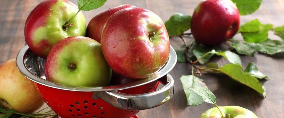 Неделя на яблоках результаты