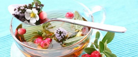 Методы очищения организма при онкологии в домашних условиях после химиотерапии: лечебное очищение при раке