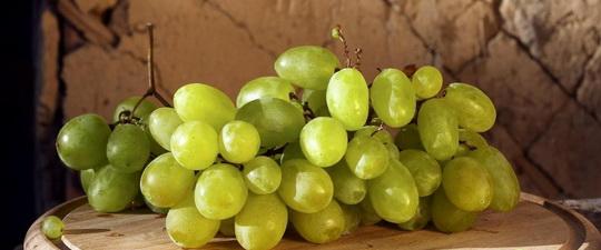 Виноград против рака: очищение, виноградная диета Бранд при онкологии и лечение виноградными косточками
